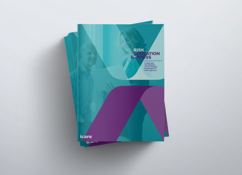 iCare: Risk Education Express Annual Report 2019