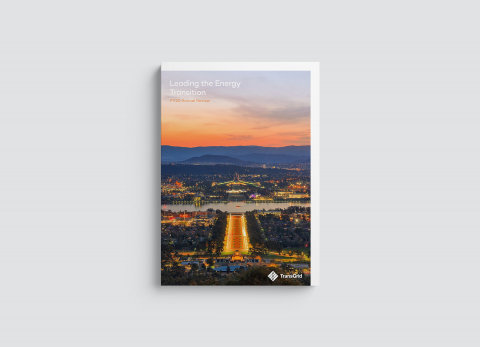 Transgrid: Annual Review 2020